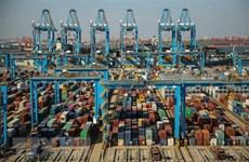 Comercio Vietnam-Canadá llega a dos mil 600 millones de dólares