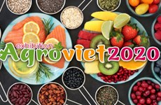 Feria internacional de productos agrícolas de Vietnam se celebrará en diciembre