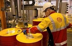 Shell probará tecnología de gemelo digital en Singapur