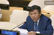 Destacan aportes de diplomacia vietnamita en los últimos 75 años