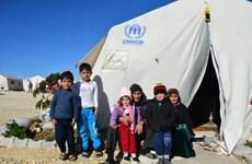Vietnam reitera apoyo a actividades humanitarias en Siria y la no proliferación de armas nucleares