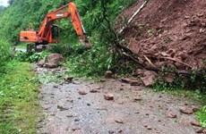 Provincia vietnamita de Ca Mau declara situación de emergencia por deslizamientos de tierra