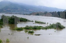 Provincia vietnamita de Vinh Phuc empeñada en mitigar impactos de inundaciones