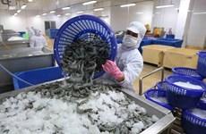 Ventas vietnamitas de camarones a Corea del Sur presentan perspectivas alentadoras