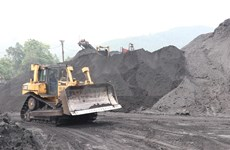 Producción de carbón de Indonesia prevé aumentar 11 por ciento en 2021