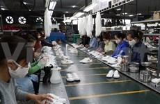 Vietnam emite más de siete mil certificados de origen tras un mes de vigencia de EVFTA