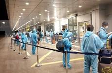 Repatrian 350 ciudadanos vietnamitas de Australia y Nueva Zelanda
