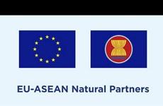 Unión Europea anuncia nueva asociación con 19 instituciones de investigación de la ASEAN