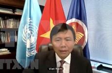 Vietnam pide pleno cumplimiento de alto el fuego global convocado por la ONU