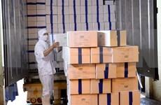 Vietnam exporta primer lote de camarones a la Unión Europea bajo EVFTA