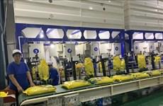 Vietnam por garantizar normas sobre la certificación de arroz aromático exportable a la UE