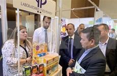 Empresas vietnamitas asisten a feria internacional de comercio en línea en Argelia