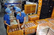 Vietnam regula contingentes arancelarias para importación de tabaco crudo y huevos