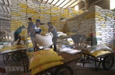 Comité Permanente del Parlamento vietnamita ratifica la compensación de la reserva nacional de arroz