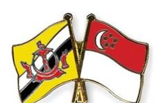 Singapur y Brunei se comprometen a fortalecer la cooperación en defensa
