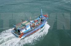 Provincia vietnamita acelera instalación de equipos de monitoreo en barcos pesqueros