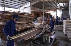 Exportaciones madereras de provincia central de Binh Dinh aumentan a pesar de la pandemia