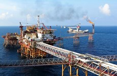 Grupo de petróleo y gas sigue como líder en la lista de 500 empresas vietnamitas más rentables