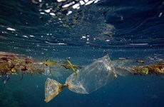 Implementan en Vietnam actividades para hacer el mundo más limpio