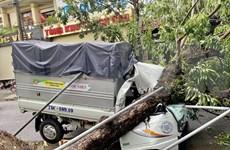 Vietnam reporta al menos cinco muertos por el tifón Noul