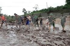 Cruz Roja de Vietnam brinda asistencia a afectados del tifón Noul