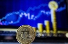 Banco Estatal de Vietnam busca prohibir circulación de moneda digital