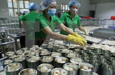Aceleran cuarentena para frutas vietnamitas exportadas a EE.UU.