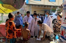Camboya advierte sobre brote del virus Chikungunya