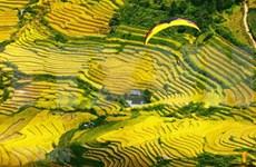 Contemplan la belleza de Mu Cang Chai en helicóptero