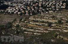 Vietnam llama a Israel a detener expansión de asentamientos