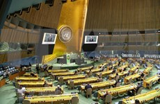 Vietnam propone iniciativas para conservación de biodiversidad en Cumbre temática de ONU