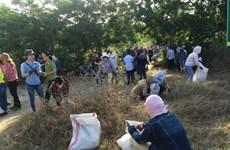 Da Nang despliega modelos de protección ambiental eficientes
