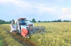 Provincia vietnamita de Vinh Long por aumentar 36 por ciento su ingreso presupuestario