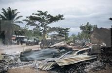 Vietnam destaca papel de diálogo y reconciliación para solventar conflictos en República Democrática del Congo