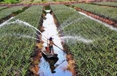 Provincia vietnamita de Long An encabeza ingreso presupuestario en delta de Mekong