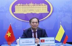 Vietnam y Colombia realizan quinta consulta política a nivel de vicecancilleres