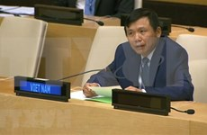Vietnam e Indonesia piden un enfoque integral para abordar desafíos en Mali