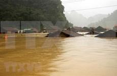 Cruz Roja de Vietnam brinda asistencia urgente a afectados por inundaciones