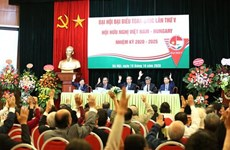 Convoca Asociación de Amistad Vietnam-Hungría V congreso