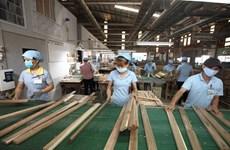 Vietnam espera alcanzar más de 12 mil millones de dólares por venta de madera y derivados