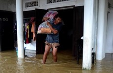 Premier vietnamita exige mayores esfuerzos frente a la tormenta Nangka y las intensas lluvias