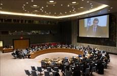 Vietnam e Indonesia insisten apoyo internacional para la región de los Grandes Lagos en África