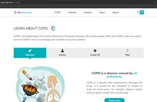 Lanzan en Vietnam sitio web sobre enfermedades respiratorias