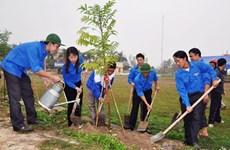 Miles de estudiantes participan en carrera comunitaria por la plantación de árboles