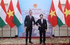 Vietnam y Hungría cooperan en el sector financiero