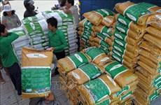 FAO lista para responder a las necesidades de seguridad alimentaria en Camboya