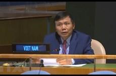 Reitera Vietnam compromiso con misiones de paz de ONU