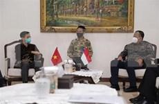 Corroboran Vietnam e Indonesia cooperación marítima y pesquera