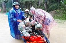 Donan cuatro mil toneladas de arroz a pobladores afectados por inundaciones