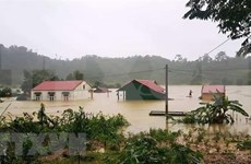 Al menos 84 muertos por inundaciones en el centro de Vietnam